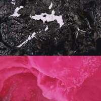 Rafiq BHATIA - BAD ENGLISH NUEVO CD