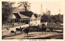 Mt Wilson California Hotel Deer Real Photo Antique Postcard K72394