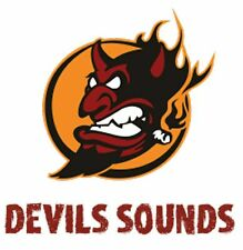 Devils Sound RC Soundmodul 3000 PS V8 Power Boot 60 Watt Verstärker mit100 Phone