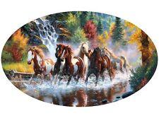 Motor home Caravan Camper Horse box Horses Sticker Mural Decal Graphic mh1-52