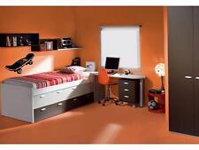 SKATEBOARD Boys Bedroom Kids Wall Art Decal Sticker