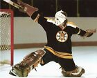 GILLES GILBERT BOSTON BRUINS NHL HOCKEY 8X10 GOALIE PHOTO