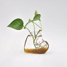 Creative Heart-shaped Vase Clear Glass Plant Flower Terrarium Pot Home Decor