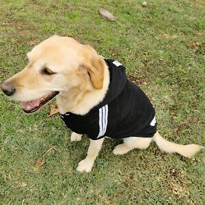 Dog Hoodie dog Jumper dog warn Clothes dog Cat cloth 4 tiny dog to 35kg big dog