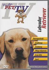 Labrador Retriever - Meister PETz TV *DVD*NEU* Ratgeber - Hund