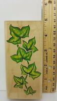 "English Ivy Wood Mounted Rubber Stamp Stampede A204F 4.75"" Designs Leaves Vine"