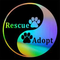Rescue / Adopt  Yin And Yang Dog Paw Sticker Car Window Door Bumper Vinyl Decal
