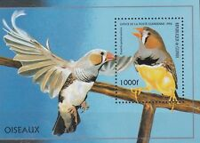Birds Guinean Stamps