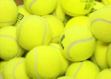 25 used tennis balls - Grade A - FREE FAST SHIP - Support our Non-Profit Mission