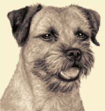 BORDER TERRIER dog - complete counted cross stitch kit