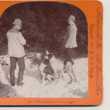 Hunters with their fine Hunting dogs Keystone Stereoview 1898