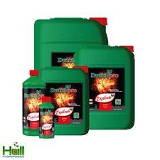 More details for dutch pro explode - 250ml / 1 litre / 5 litres - 1l / 5l - flowering booster