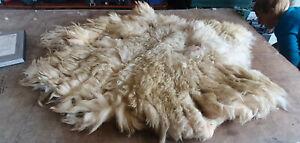 "Raw Sheep Fleece Spinning Weaving Stuffing : White Welsh Mt 1.0 kg St= 4"" (428)"