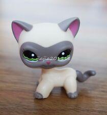 #1116 Littlest Pet shop LPS Grey Cream Cat Around The World Masked Siamese Ranch