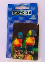 Cania Gorge Monto Qld Australia Souvenir Magnet Rainbow Lorikeet Vintage (K13)