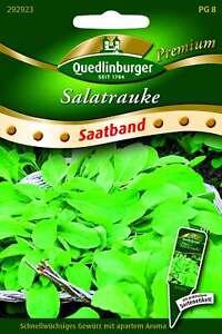 Saatgut - Samen SB Salatrauke 292923 Quedlinburger AR5739