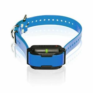 Dogtra Edge RT Additional Receiver  Blue Green