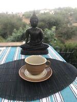 Mikasa Bob Van Allen Sandstone Coffee Cup And Saucer