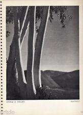 Héliogravure  - 1935 - George H.Phillips - Sentinels