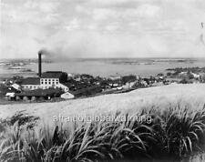 Photo 1915 Aiea Oahu Sugar Plantation - Honolulu Hawaii