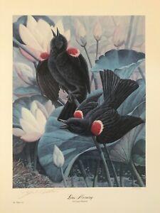 John Ruthven Red Winged Blackbirds