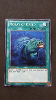 Yu-Gi-Oh ! Moray of greed SDRE-EN029 Near Mint