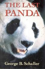 The Last Panda Detailed Account China Wild!!