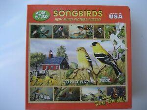 White Mountain SONGBIRDS Terry Doughty 750 Pc PUZZLE BACKYARD BIRDS COMPLETE EUC