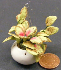 1:12 Scale Green & Red Plant In Hanging Basket Tumdee Dolls House Flower D1631