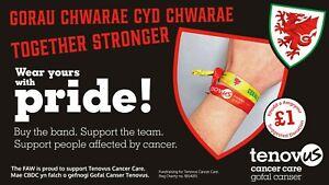 Tenovus Cancer Care - FAW Cymru/Wales Euros – Away Wristband