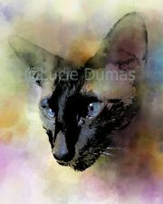 ACEO art print Cat 620 siamese from original digital artwork by L.Dumas