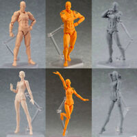 PVC Figure Ferrite Action Play Toy Arts Kai Model Drawing Figma Manual Model NEW