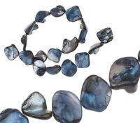 Perlen Muscheln Perlmutt Blau 18 stk Nugets Formlos Chips 15-20mm Schmuck U119