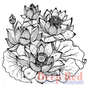 Deep Red Stamps Lotus Rubber Cling Stamp
