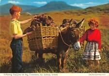 uk1630 connemara galway ireland real photo uk collecting turf children donkey