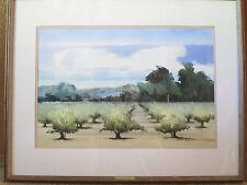 Superb Original Watercolor Painting - Napa Valley Signed Frank Lalumia 1979