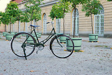 Indienrad Fahrrad Damenfahrrad Vintage Retro DUNKELGRÜN 28er Bike NEU + OVP