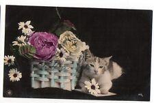 Cat & roses in baskets CUTE GERMAN Vintage original postcard ca1900