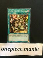 Yu-Gi-Oh! Village Secret Des Magiciens INCH-FR043 1st