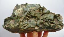 Green Opal Natural Rough Specimen Idaho 1 lb 10.6oz