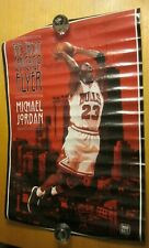 "Michael Jordan 1996 Costacos Bros. 23""X35"" Poster The Great Chicago Flyer NBA"