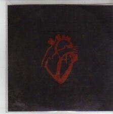 (CH631) The Chapman Family, All Fall - 2011 DJ CD