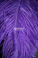 Purple Ostrich Feathers PlumeWing Male Wing Plume Feather 22-24 inch 12 Pcs