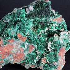 MALACHITE, FIBROUS XLS, 3.5 INCH, from ZACATECAS, MEXICO. EXCELLENT!!  #2732..