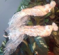 Large Pair Of Clip On Dove Ornaments Laced Scented Ivory & White Sequins Pearl
