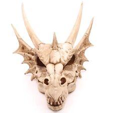 Großer Drachenschädel Drache Höhe 47 cm Schädel groß Fantasy Dragon