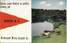 You Can Have a Jolly Time at Remsen NY Vintage postcard postally used in 1914