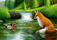 Red fox wood duck beaver pond wildlife landscape limited edition aceo print art