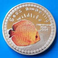 Burundi 5000 francs 2014 UNC Symphysodon Discus Fish Sea's Amazing Wildlife
