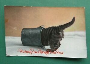 110  Year Old  CAT  <>  WISHING  YOU  A  BRIGHT  NEW  YEAR  <>  POST CARD